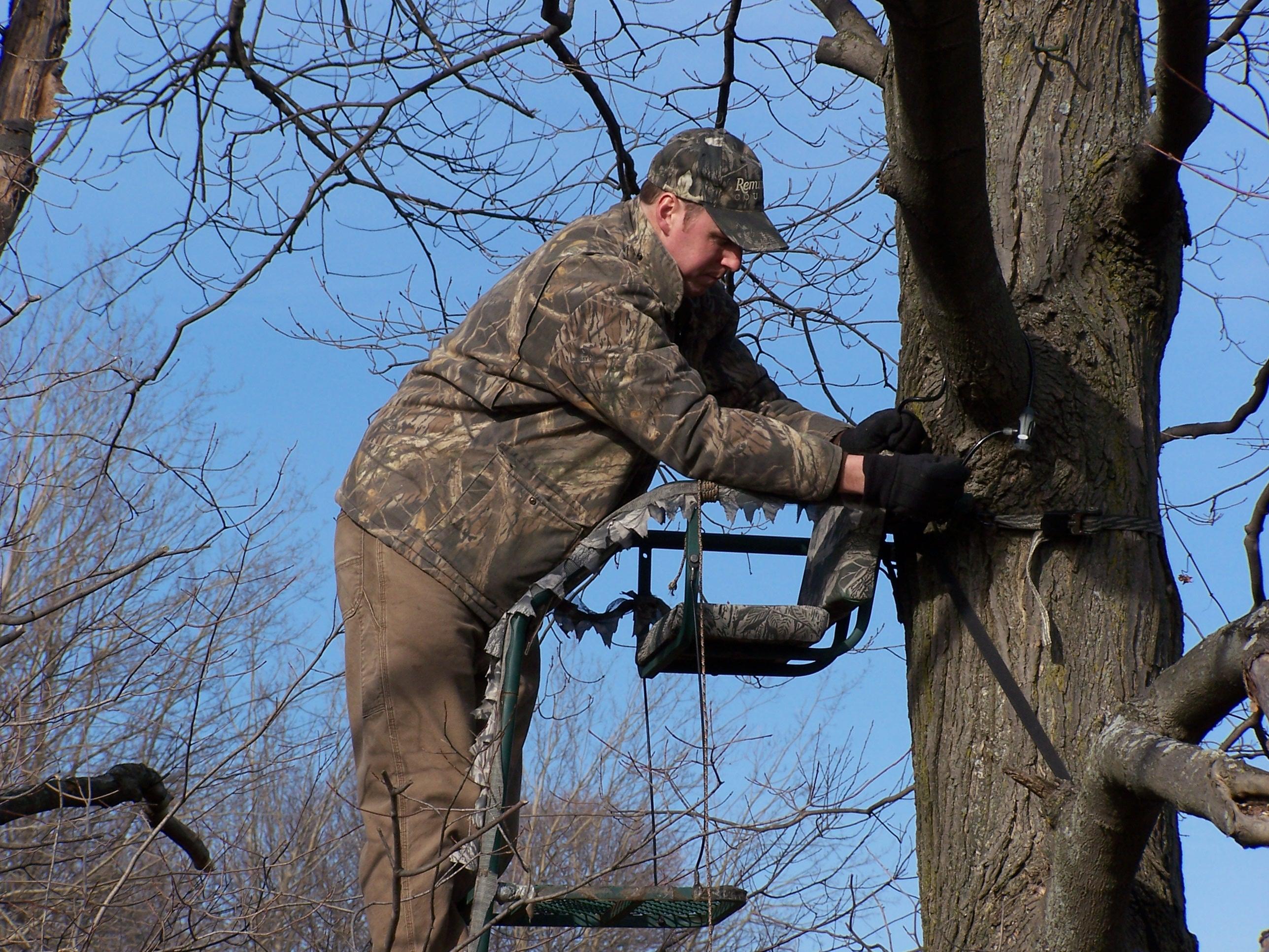 Tree Stand Regulations